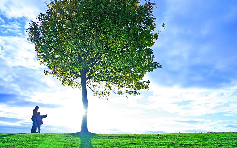 Green Living Bisa Bantu Hemat Biaya Bulanan, Yuk Coba!